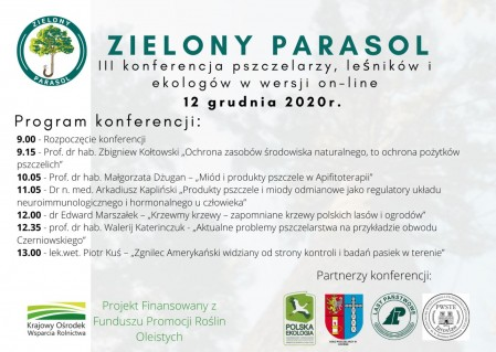 Zielony parasol program